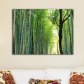 Tableau Foret de Bambous