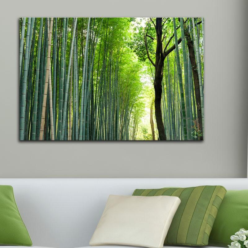 tableau foret de bambous d coration nature et zen. Black Bedroom Furniture Sets. Home Design Ideas