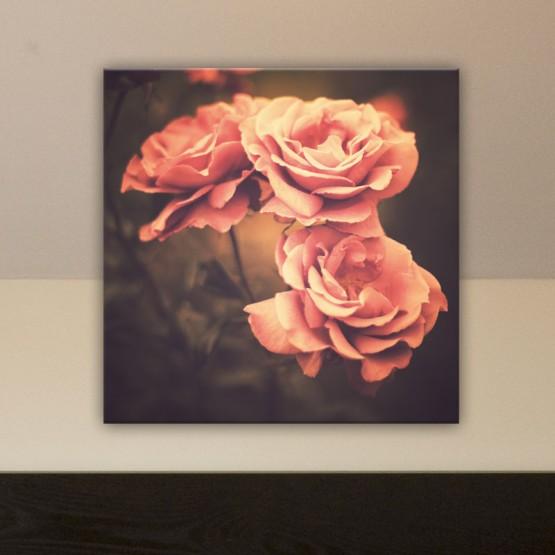 Tableau Rose Vintage