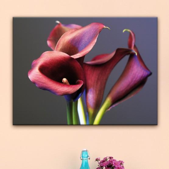 Tableau Bouquet de Callas