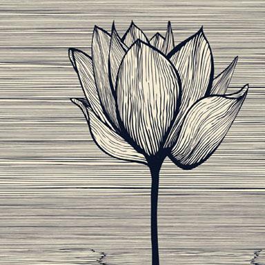 Les Tableaux Zen